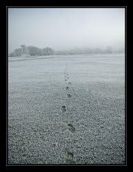 Frozen footsteps by iMacThere4iAm