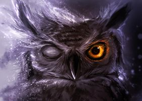 Night Owl by Delun