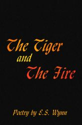 The Tiger And The Fire by Durkee341