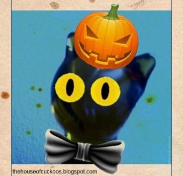 THoC Punkin Hed 4 by House-of-Cuckoos