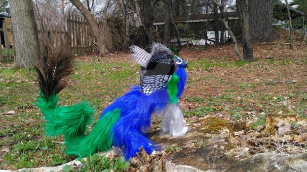 Peacock Gryphon Art Doll by Dragonlady113