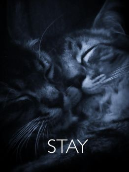 Stay by ShangriLaLove28
