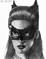 Catwoman by Wanted75