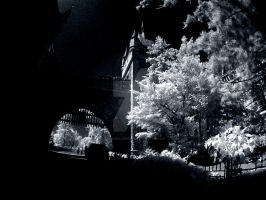 ir_citypark16 by RichardjJones