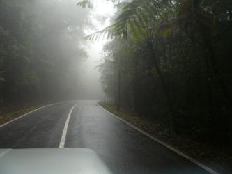 Driving into the mist by epxy