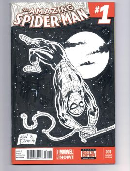 Blank Cover- Spider-man illo-charity auction. by kendaviscartoons