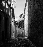Streets of Lisbon #4 by Roger-Wilco-66