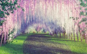 Wisteria Park by jepegraphics