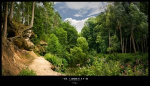 Photo - The Hidden Path by tigaer