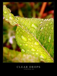 Clear Drops by In5omn1ac