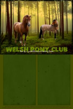 Welsh Pony Club by FromHallowedWithLove