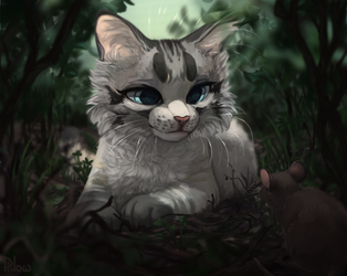 Just cat by GrayPillow