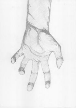 Hand Sketch by In-Da-Head-7