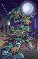 TMNT 2013 by natelovett