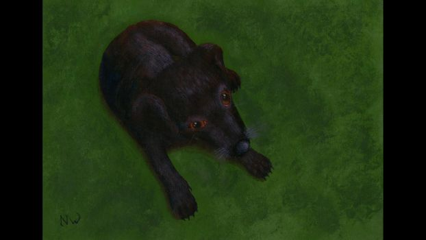 My Pup Painting by Hoover1979
