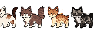 Open Cat Adopts (Paypal/Points) *PRICE LOWERED* by MacyDraws