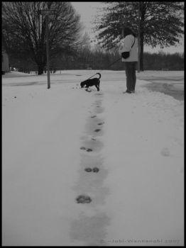 Footprints by Jobi-WanKenobi