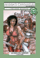 Cover of Midda's Chronicles - Book Four by middaschronicles