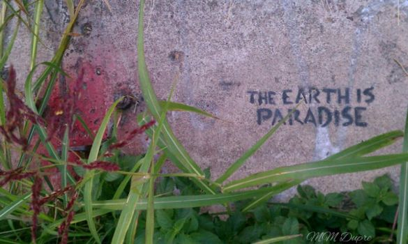 The Earth is Paradise by amaranth333
