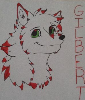 Gilbert (A.K.A Prussia) by mm101199