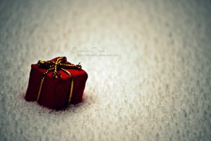 A present for Christmas by Silviaa92