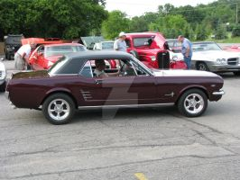 1966 Ford Mustang 289 II by Qphacs