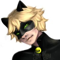 Chat Noir sketch by MiyuKey