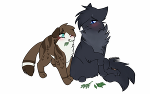 Cinderpelt x littlecloud ohh the ship has sailed by nizumifangs