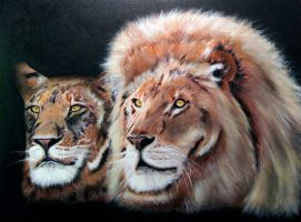 Lion and Lioness by dx