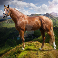 Horse Avatar | Chestnut Premade by Liberty-Designs