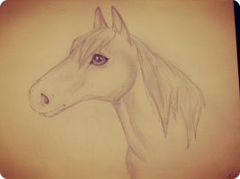 .: Horse Headshot :. by crizzii