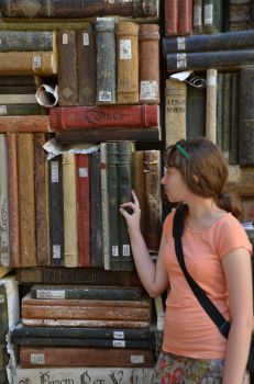 Book wall (2) by Sunchos