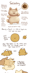 Teacat Anatomy .Closed species Reference. by scribblin