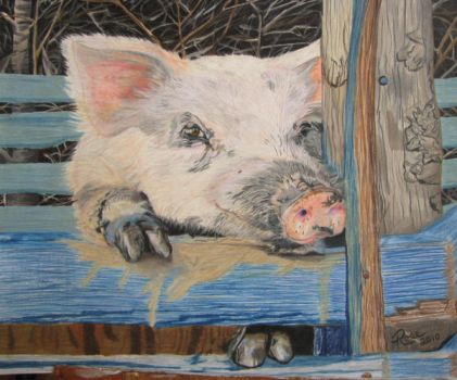 This little piggy wants out by rosegirouard