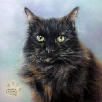'OLIVIA' Cat Portrait by Louise Marie by LouiseMarieFineArt