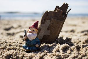 Beach Wood Hector by thedustyphoenix