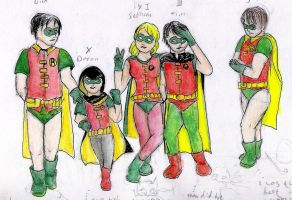 Robins by rakefet666