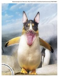 Dave the Dogguin by HumanDescent