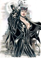 Catwoman and Batman by Medsonlima