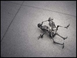 Skeleton Fight by MaddieV