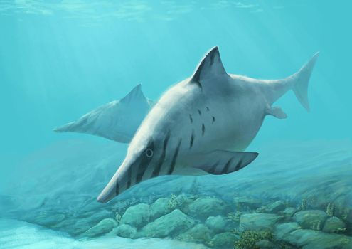Ophthalmosaurus by Apsaravis