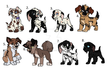 More cute pup adopts by Claire-Cooper