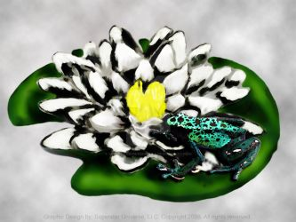 Lily Pad Frog by SuperstarUniverseLLC