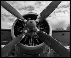 Antonov AN-2 by Roger-Wilco-66