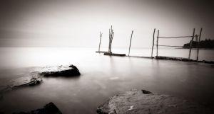 Poles in white... by denis2