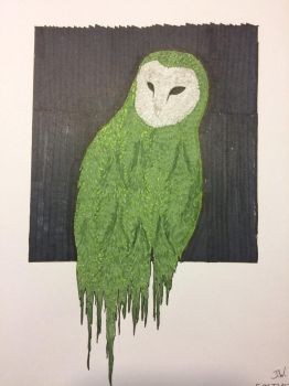 Owl by Coi-0