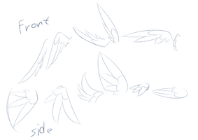 Wing Sketches by SilverBlazeBrony