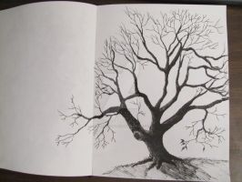 Old Tree sketch done with a pen. by TylersArtShack