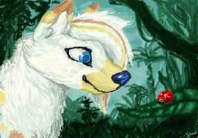Flare sees a ladybug by strazi