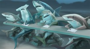 School of Sharks by SMcNonnahs